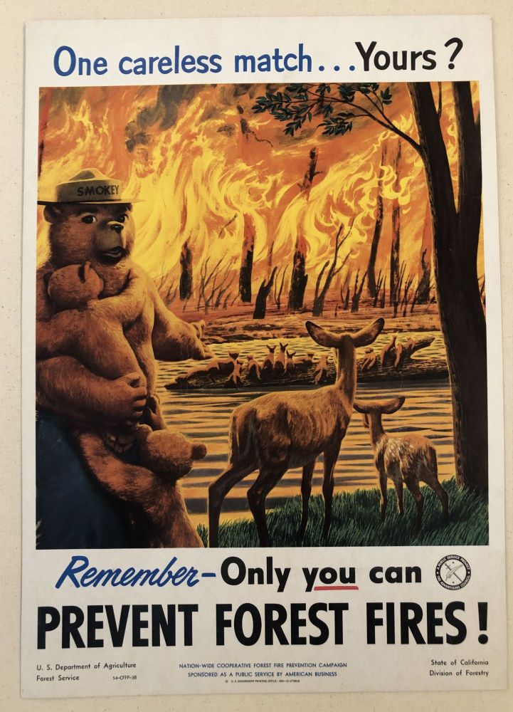 ONE CARELESS MATCH...YOURS? Remember- Only You Can Prevent Forest Fires! (Original Forest Service Poster).